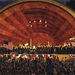 DCR Hatch Shell