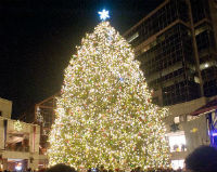 Faneuil Hall Market Place Tree Lighting